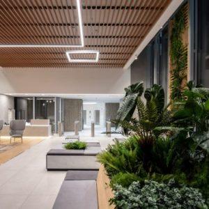 Edificio-Los-Cubos-alquiler-de-oficinas-Madrid-terrazas-Cushman-6-Large-750x397