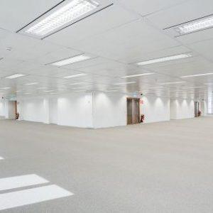 Oficinas-interior-Torre_Picasso-cushman-Madrid-e1532937676945