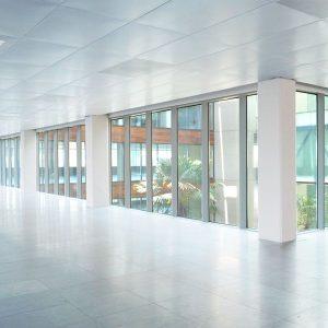 oficina-interior2-wtcalamedapark-cushman-barcelona