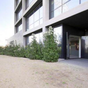 oficinas-fachada2-canametller-cushman-barcelona