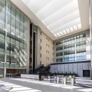 oficinas-hall-ribera-loria-cushman-madrid