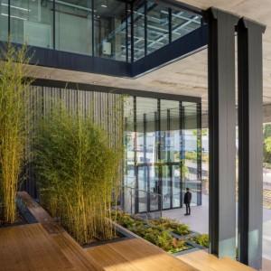oficinas-hall1-manoteras12-cushman-madrid