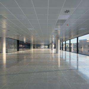 oficinas-interior-nanclaresdeoca5-cushwake-madrid-1024x687