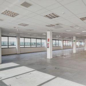 oficinas-interior1-juliancamarillo4c-cushwake-madrid-1024x647