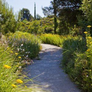 oficinas-jardin-vallsolanagardenbusinesspark-cushman-barcelona