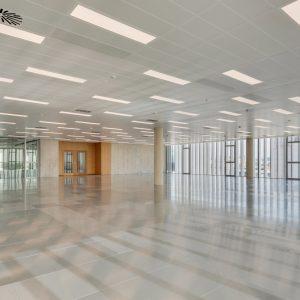 oficinas-interior1-europabuilding-cushwake-barcelona