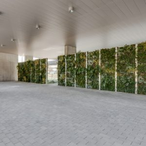 oficinas-interior3-europabuilding-cushwake-barcelona