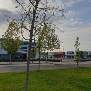locales-parque-comercial-el-golf-talavera-3