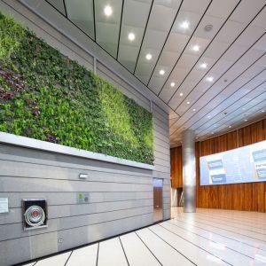 oficinas-hall1-paseodelacastellana216-cushwake-madrid