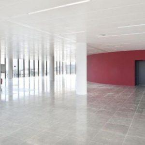 oficinas-interior-torrerealia-cushman-barcelona