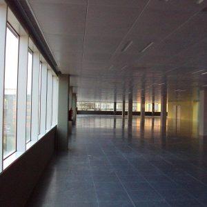 oficinas_interior_wtcap_cushman_barcelona-e1532690713603