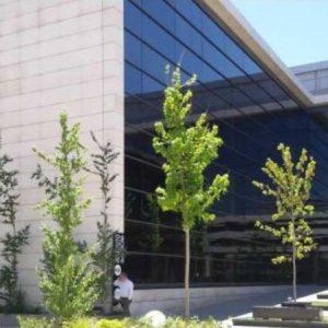 Oficinas-fachada_03-Camino-de-la-Zarzuela-19-21-cushman-Madrid-1-e1532944619627