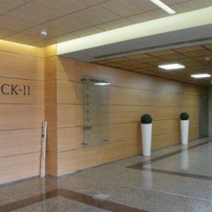 oficinas-hall-ramirezqarellano29-cushman-madrid