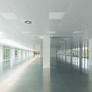 oficinas-interior1-franciscadelgado11-cushwake-madrid