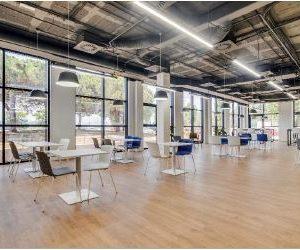 Oficinas-interior-laselva2-cushman-barcelona