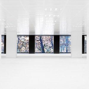 oficinas-interior-diagonal609-cushwake-barcelona